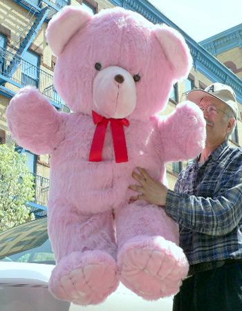 Need Big Teddy