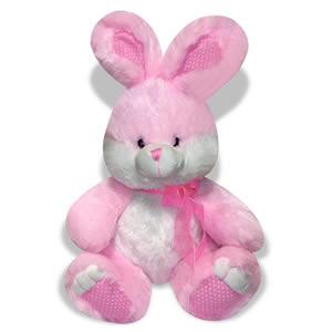 """Rabbit 14 """""""