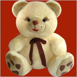 Teddy Medium