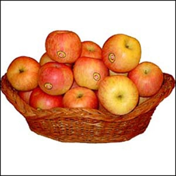 4 kg Fresh Apple Basket