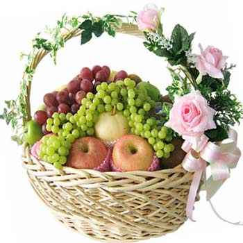 Dream Fruits Basket