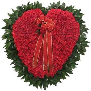 Carnations in Heart