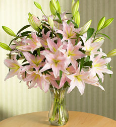 Pink Lilies in Vase