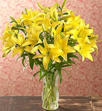 Yellow Lilies in Vase