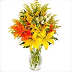 Mixed Lilies in Vase