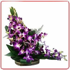 Orchids Basket