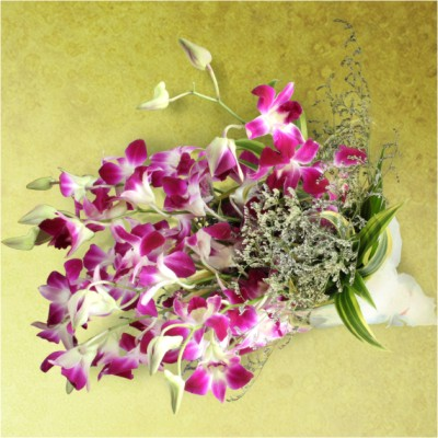 Orchids Bunch