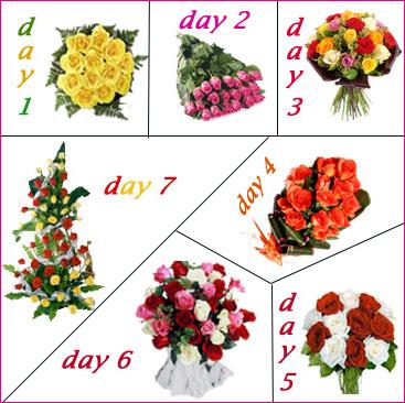 Serenades 7 Days