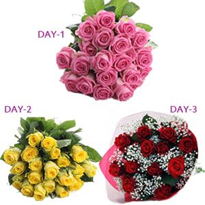 Serenades Gifts E