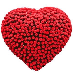 Big Rose Heart