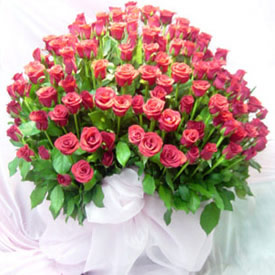 150 Pink Roses