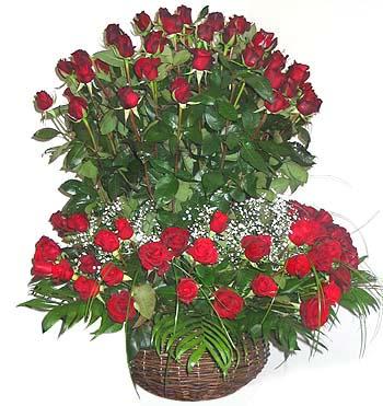 Romance Gift