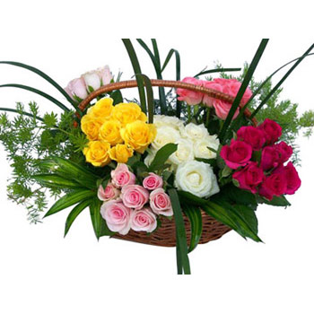 Six Colour Arrangement