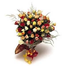 40 Mixed Roses
