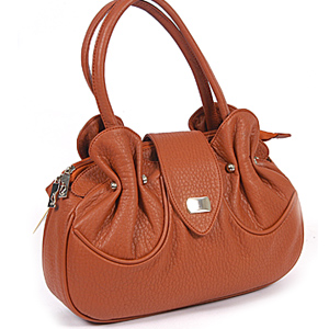 Ideal Bag For Her B