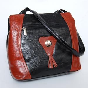 Ideal Bag For Her J