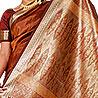 Brown Silk Saree