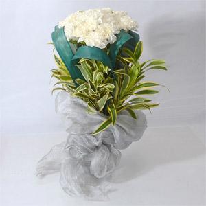 20 White Carnation Bunch